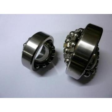 Spherical Roller Bearing 22217 BS2-2217 21317 22317 E -2RS/Vt143 Cc E/Va405 Cc/W33 -2RS5/Vt143 Eja/Va405 Eja/Va406